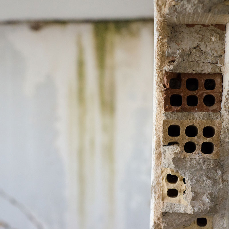 Kellertrockenlegung – Kelleraußenwandisolierung